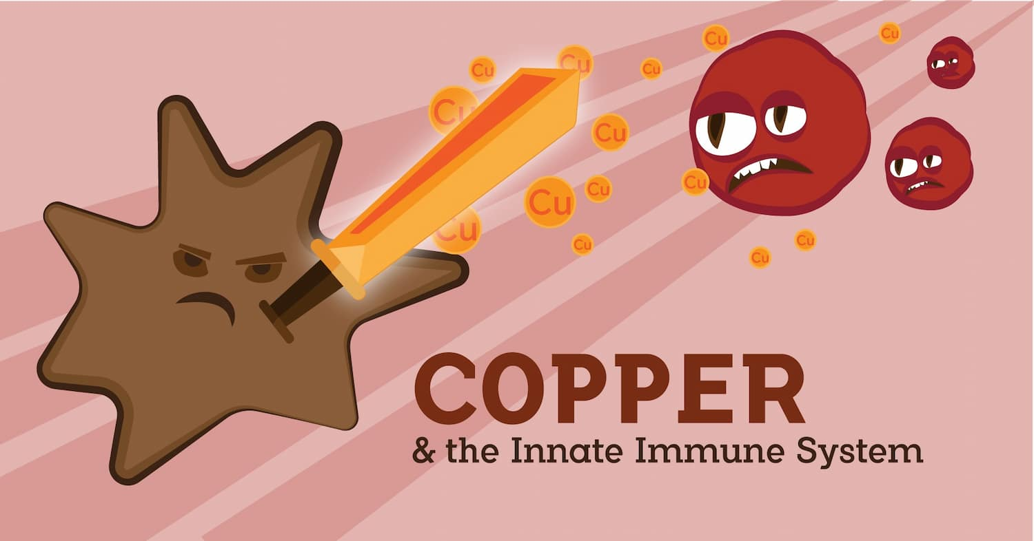 Copper Immune System-01