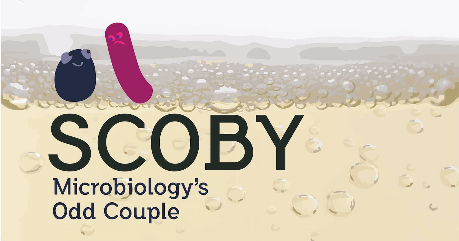 SCOBY Odd Couple-01