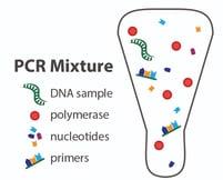 PCR mixture vial-01