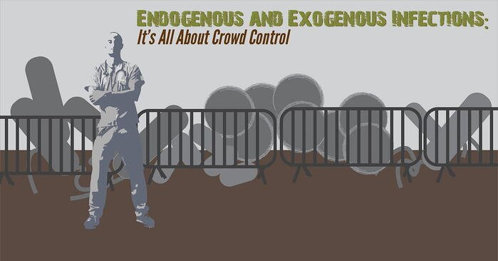 Endogenous & Exogenous Infections