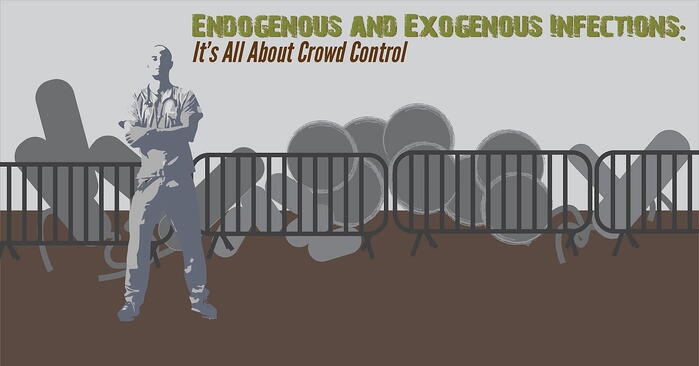 ENDO EXO infections-01.jpg