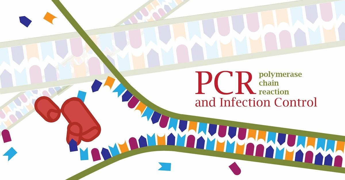 PCR DNA-01