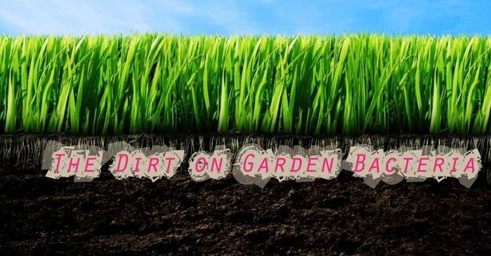 Gardening-01.jpg